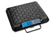 DWS2 - DIGITAL WEIGHING SCALE